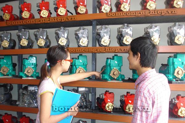 Chọn mua máy bơm nước hiệu quả