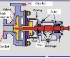 Cấu tạo và nguyên lý hoạt động của máy bơm nước