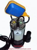 Máy Bơm Chìm Hút nước thải 1 HP HSM250-1-75 265T (có phao)