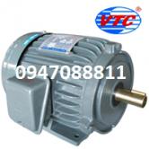 Motor khía 3 phase 1/2HP VTC 4P Mặt Bích