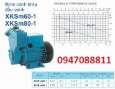 Máy bơm nước đẩy cao Lepono XKSm60-1 (APSm37)