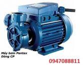 Bơm nước ly tâm dân dụng đầu gang Pentax CP45