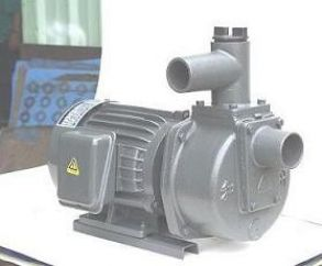 Máy bơm tự hút Đầu Gang 1HP HSP250-1-75 20