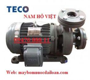 Máy bơm lý tâm đầu gang Teco G32-50-2P-2hp