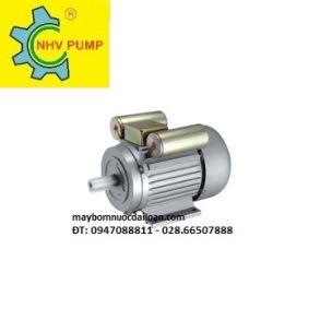 Motor Jinlong 4p