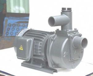 Máy bơm tự hút Đầu Gang 2HP HSP250-11.5 20
